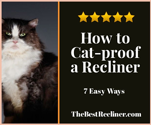How to Cat-proof a Recliner