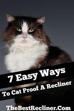 Ways To Cat Proof Recliner